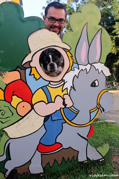 Viagem com cachorro Monte Verde viagem pet friendly Minas Gerais Hotel cabeça de boi